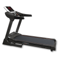 BRONZE GYM T812 LC